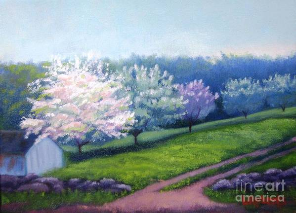 Apple Blossoms Art Print featuring the painting Spring In New England by Laura Roberts