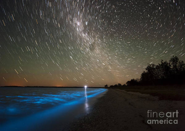 Bioluminescence Art Print featuring the photograph Star Trails And Bioluminescence by Philip Hart