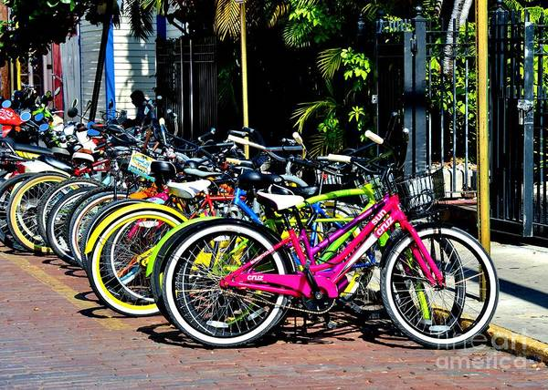 Summer Art Print featuring the photograph Summer Bright Pedals by Lisa Renee Ludlum