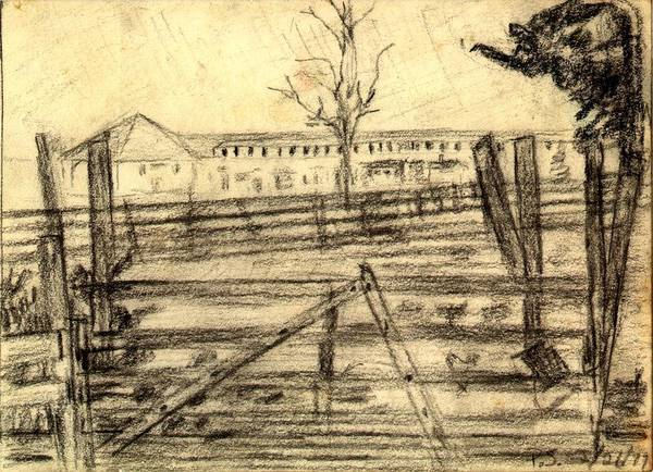 Barn Art Print featuring the drawing The Barn by Peter Shor