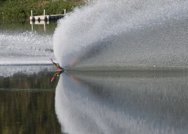 Waterskiing Art Print featuring the photograph The Water Skier by Steven Natanson