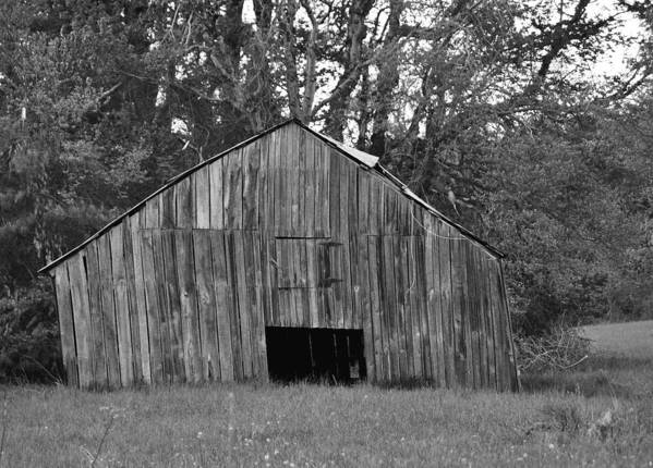 Barn Art Print featuring the photograph Tilting by Eric Liller
