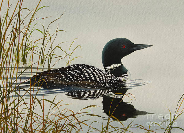 Loon Art Print featuring the painting Tranquil Stillness Of Nature by James Williamson