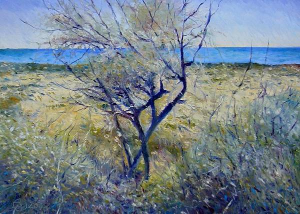 Impressionism Art Print featuring the painting Tree At Aseeb Oman 2002 by Enver Larney