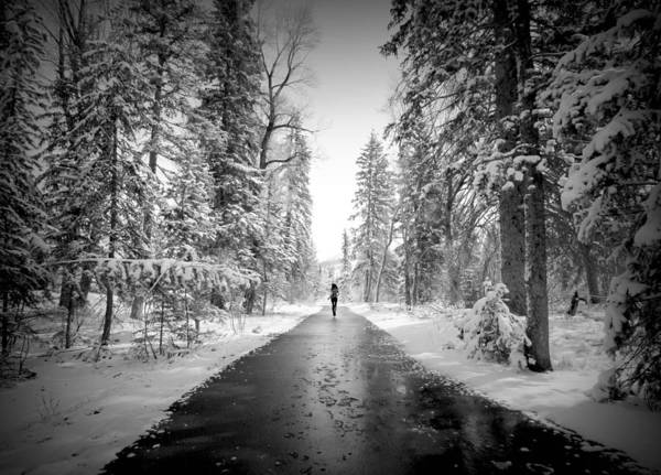 Snow Art Print featuring the photograph Trying To Escape The Snow by Danielle Marie