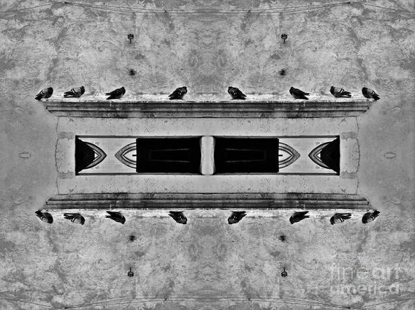 Pigeon Art Print featuring the photograph 16 Pigeons On A Pharaoh's Tomb by Andy Prendy