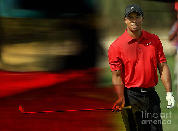 Tiger Photographs Art Print featuring the mixed media Tiger Woods by Marvin Blaine