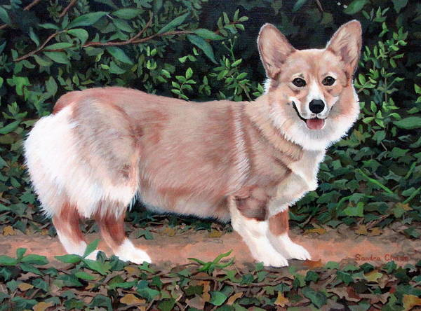Dog Art Print featuring the painting A Portrait Of Pickle by Sandra Chase