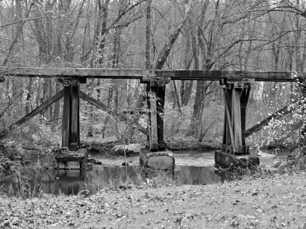 Bridge Art Print featuring the photograph Abandoned Bridge by Brenda Conrad