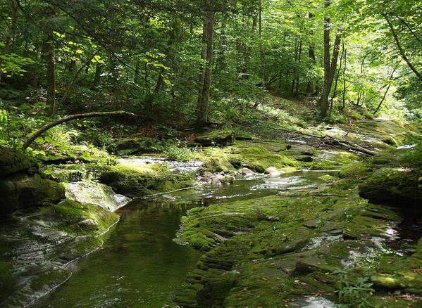 Rocks Art Print featuring the photograph Adirondack Stream by Karen Kluglein