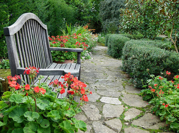 Bench Art Print featuring the photograph Bench In Borde Hill Gardens by Vanessa Thomas