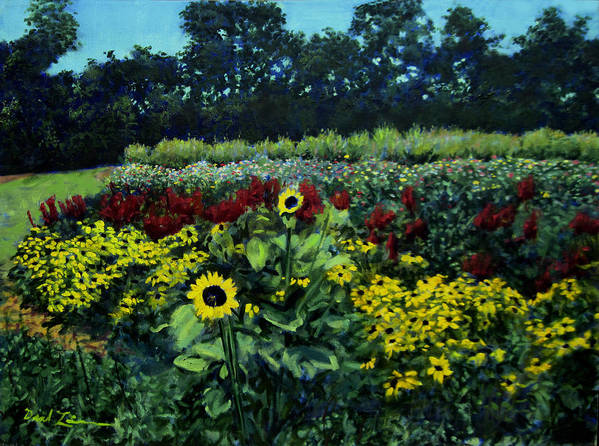 Landscape Paintings Paintings Art Print featuring the painting Black Eyed Susans Part 1 by David Zimmerman