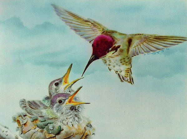 Hummingbirds Art Print featuring the painting Breakfast by Thomas J Herring