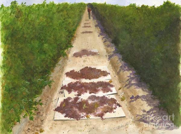 Vineyard Art Print featuring the painting California Raisin Harvest by Sheryl Heatherly Hawkins