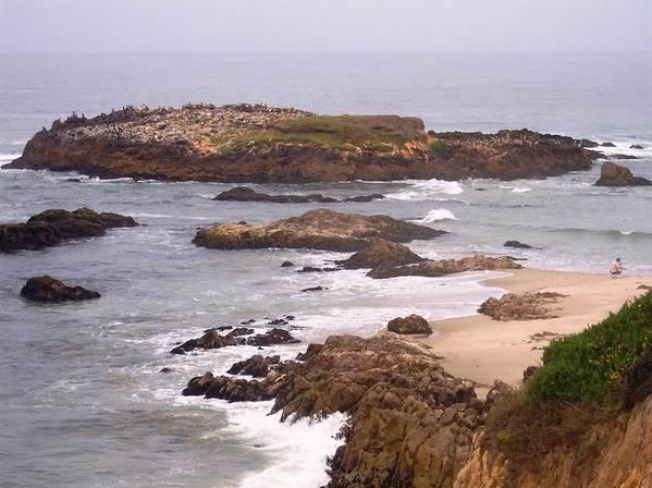 Coast Art Print featuring the photograph Coastal Scene 9 by Pharris Art