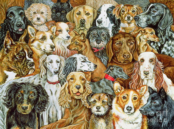 Dog Spread Art Print featuring the painting Dog Spread by Ditz