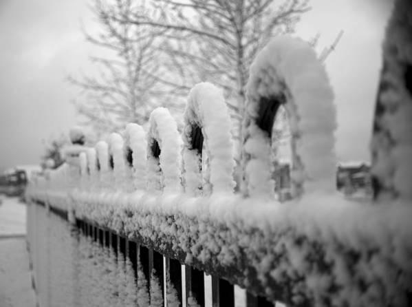 Winter Art Print featuring the photograph First Snow by Elaine Mikkelstrup