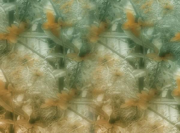 Flower Art Print featuring the photograph Garden Reverie One by Lynn De Serres