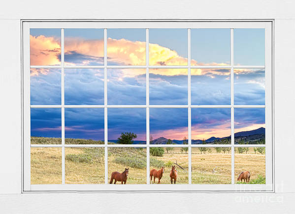 Window To Nature Art Print featuring the photograph Horses On The Storm Large White Picture Window Frame View by James BO Insogna