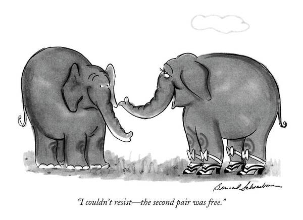 One Elephant Art Print featuring the drawing I Couldn't Resist - The Second Pair Was Free by Bernard Schoenbaum