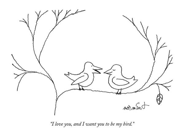 68322 Art Print featuring the drawing I Love You, And I Want You To Be My Bird by John Norment