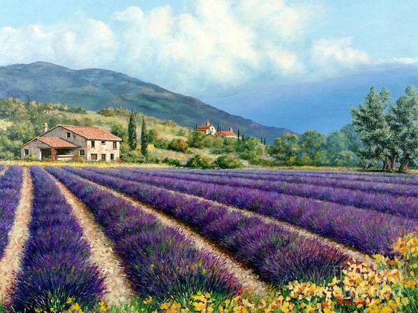 Provence Art Print featuring the painting Lavender by Michael Swanson