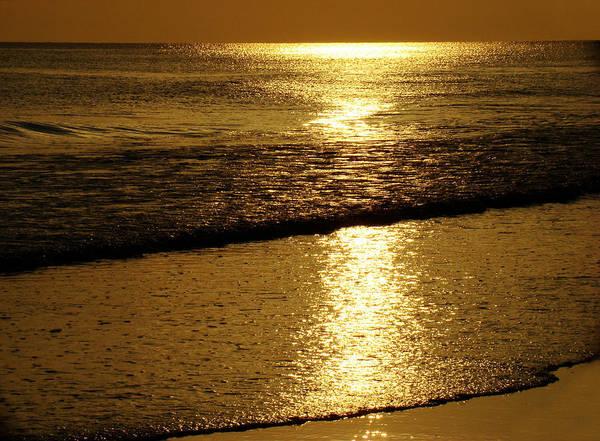 Panama City Beach Art Print featuring the photograph Liquid Gold by Sandy Keeton
