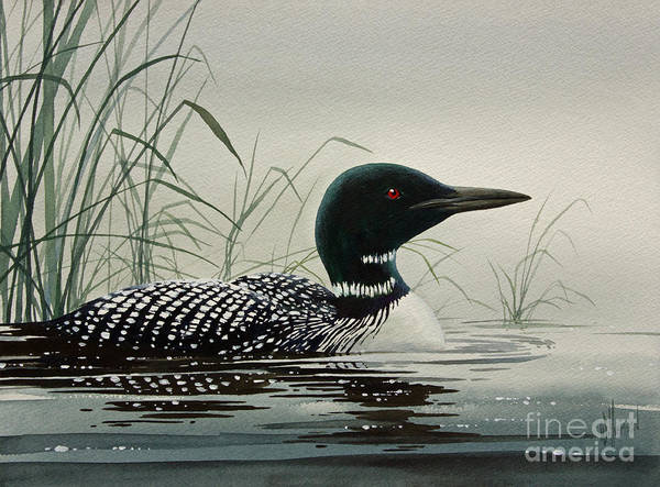 Loon Art Print featuring the painting Loon Near The Shore by James Williamson