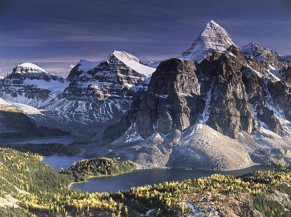 Assiniboine Art Print featuring the photograph Mount Assiniboine In The Fall by Richard Berry