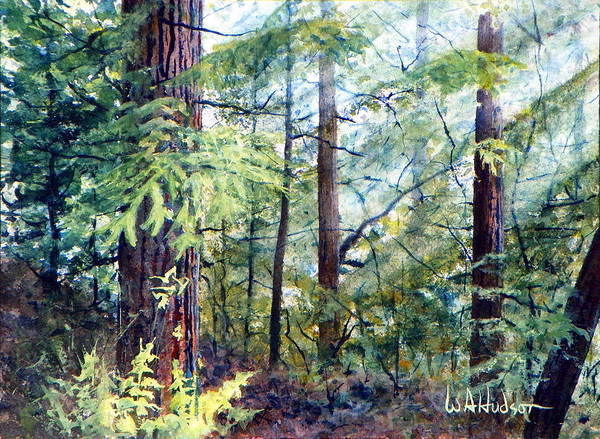 Maritime Art Print featuring the painting Navarro River Redwoods by Bill Hudson