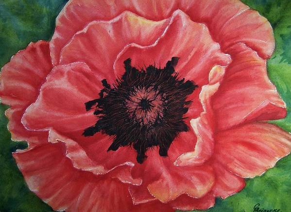 Poppy Art Print featuring the painting Poppy by Conni Reinecke