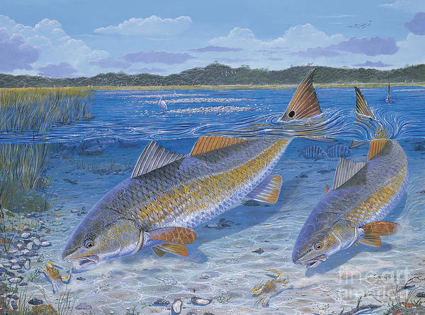 Redfish Art Print featuring the painting Red Creek In0010 by Carey Chen
