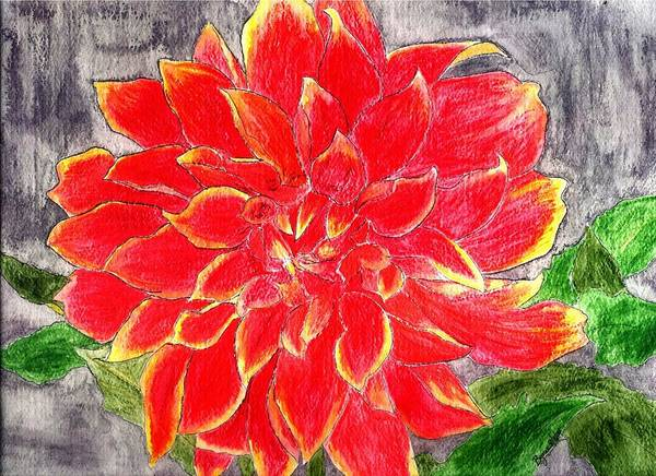 Flower Art Print featuring the painting Red Dalia by Margie Byrne