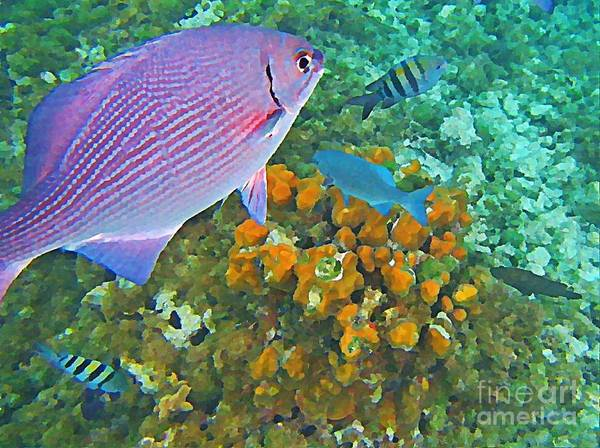 Fish Art Print featuring the painting Reef Life by John Malone