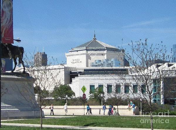Chicago Art Print featuring the photograph Shedd Aquarium-2 by Kathie Chicoine