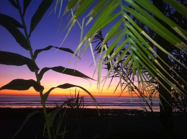 Sunset Art Print featuring the photograph Sunset At Sano Onofre by Paul Carter