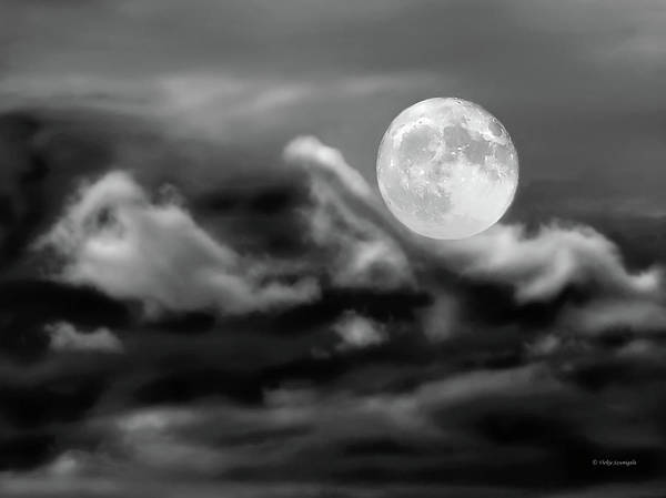 Moon Art Print featuring the photograph Surfing The Night by Vickie Szumigala