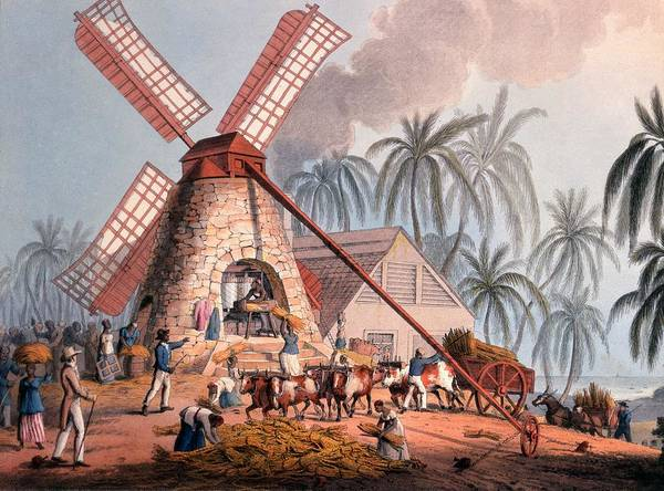 Slave Art Print featuring the drawing The Millyard, From Ten Views by William Clark