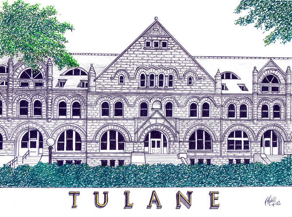 Pen And Ink Drawings Art Print featuring the drawing Tulane by Frederic Kohli