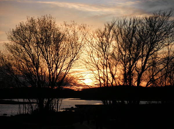 Narragansett Bay Art Print featuring the photograph View On My Evening Walk by Kate Gallagher