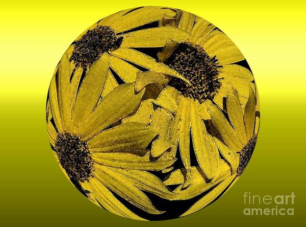 Yellow Art Print featuring the photograph Yellow And Gold by Rick Rauzi