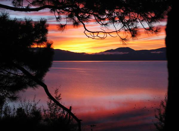 Sunrises Art Print featuring the photograph Northshore Sunrise Tahoe 2 by Tony and Kristi Middleton