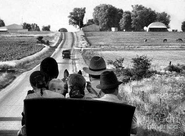Amish Art Print featuring the photograph Amish Family Outing by Julie Dant