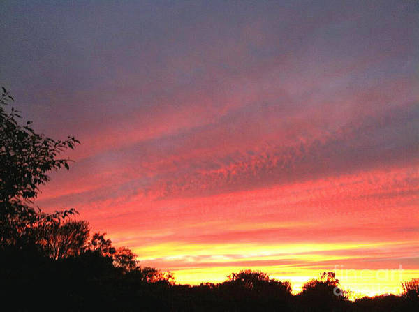 Pink Sunset Art Print featuring the photograph Beauitful Sunset by MaryLee Parker