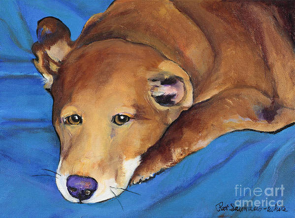 Tired Dg Art Print featuring the painting Blue Blanket by Pat Saunders-White