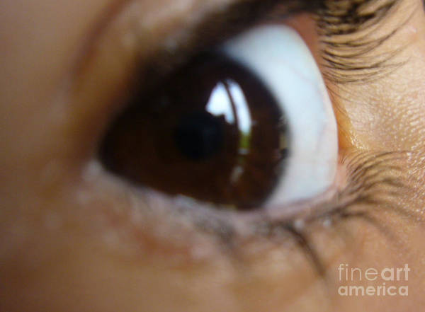 Brown Art Print featuring the photograph Brown Eyed Girl by Donna Frasca