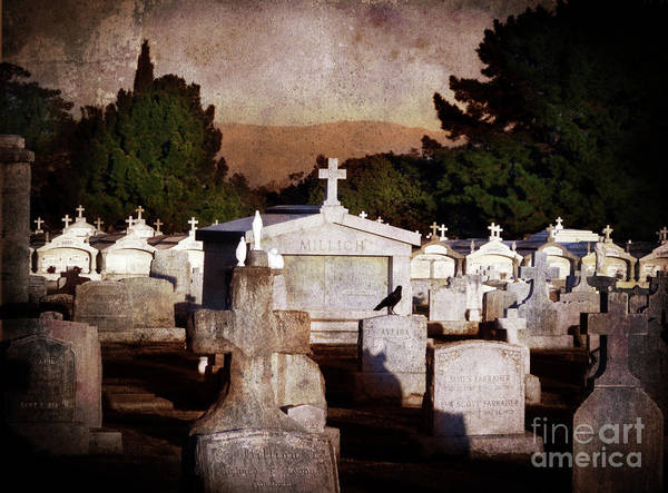Cemetery Art Print featuring the photograph Crow Among The Stones by Laura Iverson
