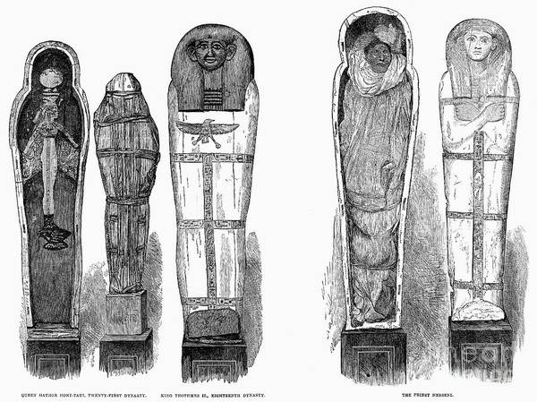 1881 Print featuring the photograph Egypt: Royal Mummies, 1882 by Granger