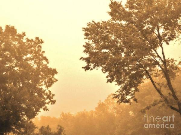 Photo Art Print featuring the photograph Fall Foggy Morning by Marsha Heiken
