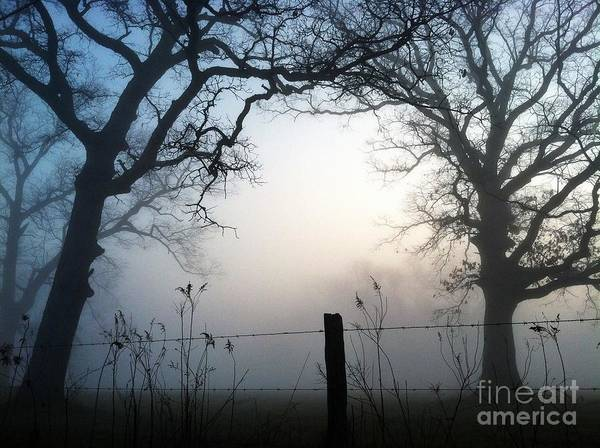 Morning Art Print featuring the digital art Morning Mist by Michelle Hawk